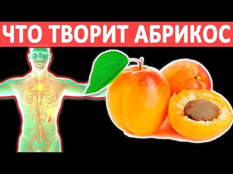 Что ТВОРИТ с организмом АБРИКОС?! Вред и польза абрикосов