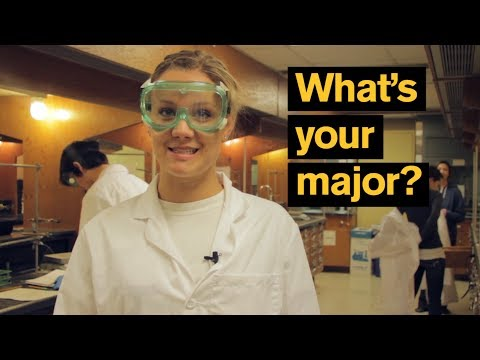 What's Your Major? | Arizona State University