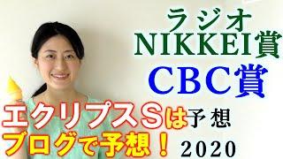 【競馬】ラジオNIKKEI賞 CBC賞 2020 予想(土曜新馬戦と安達太良Sはブログで予想!) ヨーコヨソー
