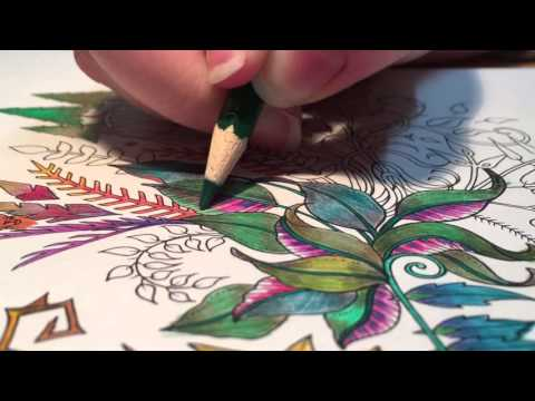 Colored Pencils For Grown Up Coloring ASMR Adult Coloring Enchanted Forest 1 Blended