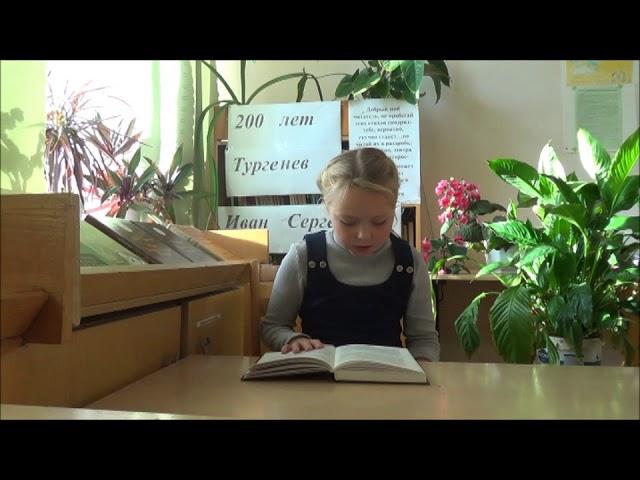 Изображение предпросмотра прочтения – МаринаЕфимова читает произведение «И.С. Тургенев Воробей» И.С.Тургенева