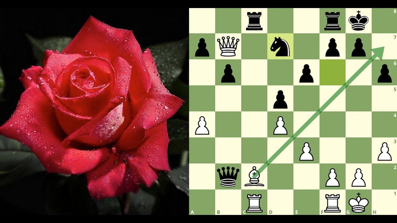Um dos lances mais bonitos da história do xadrez