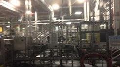 Budweiser Beer Master Tour - Kegging process