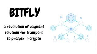 BitFly. A long awaited cryptocurrency payment solution for air travel!