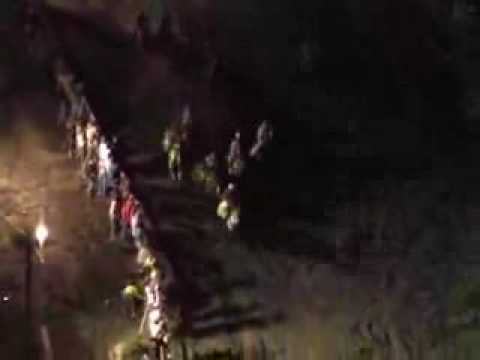 "Horses Plunge to Death in ""Suicide"" Race"
