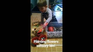 PEDIATRIC THERAPY SENSORY BIN ACTIVITY