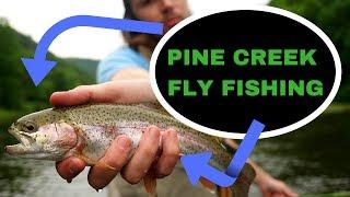 FLY FISHING the GREEN DRAKE HATCH! - Pine Creek