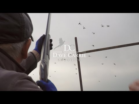 Our Glorious Grouse Moors (Dave Carrie Shooting)