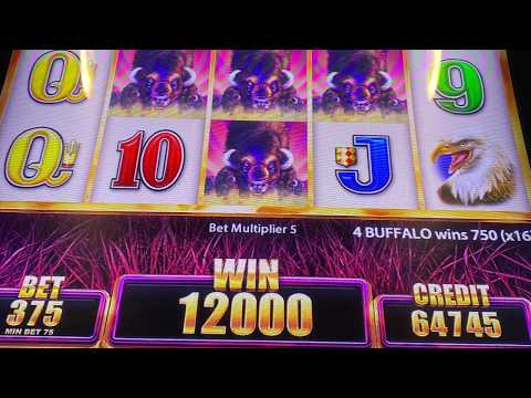 #PostCovid #MemorialDay Gambling Trip To Biloxi MS - The Casinos Are Open!!! #BuffaloGrand