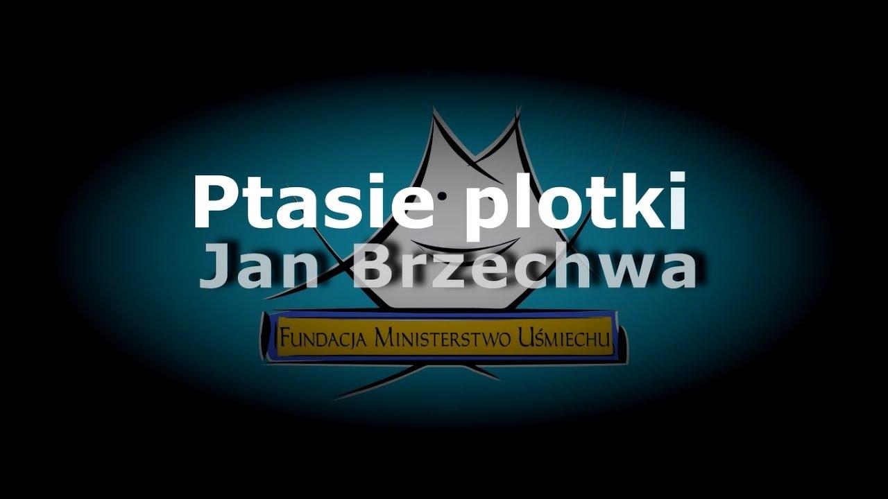 Ptasie Plotki Jbrzechwa Wmajchrzak Oborys Jliszowska Obończyk Kkaczor Jkopczyński