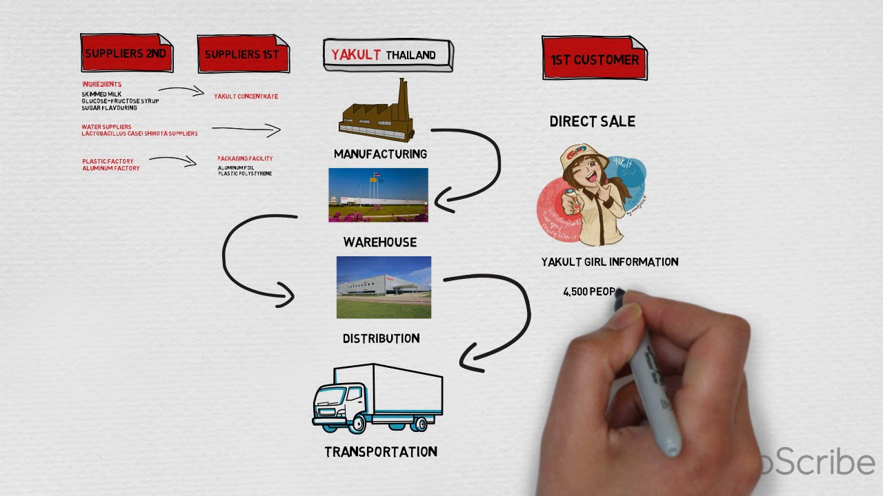 yakult supply chain Process Flow Shape