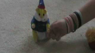 Dog Attacks Toy Mouse