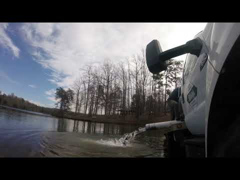 NC Wildlife Brook And Rainbow Trout Stocking A Public Pond + Fishing