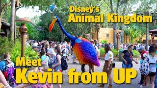 Meet Kevin from UP | Disney's Animal Kingdom