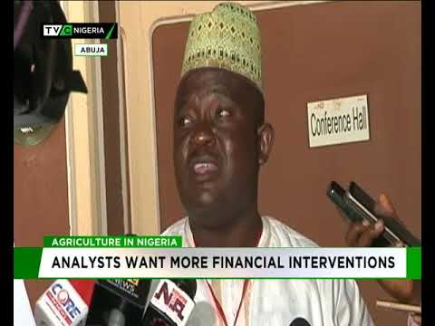 Agriculture in Nigeria: Analyst want more financial interventions