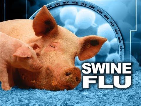 Swine flu? I DONT GET IT!?