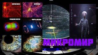 Вселенная это тело неизвестного существа. Две новые версии построения мира!!!