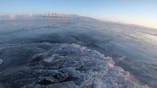 Winter Svalbard - Artic Adventure