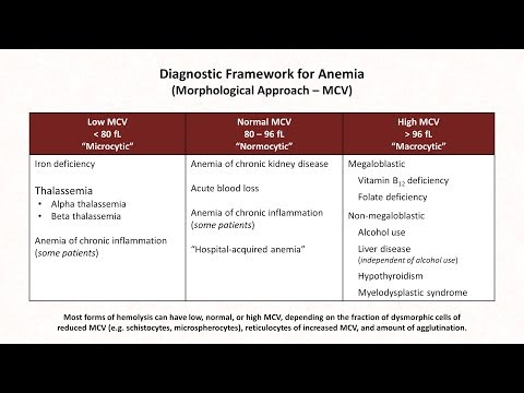 Anemia: Lesson 1 - Diagnostic Frameworks - YouTube
