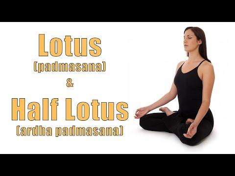 Hatha Yoga Lotus (Padmasana) and Half Lotus (Ardha Padmasana) Poses
