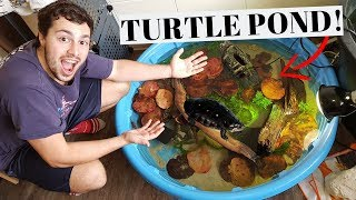 *NEW* DIY Mini TURTLE Pond!!!