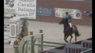 Master Cavalli Italiani Farnia della Loggia.AVI