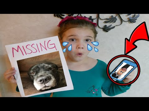 My Dog Is Missing! Mean Elf On The Shelf Took My Dog?!?! How To Stay Home From School