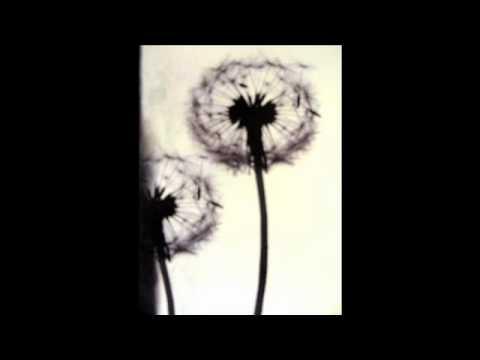 Jono McCleery - She Moves