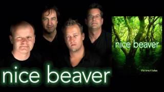 Nice Beaver - Rainbow