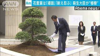 花言葉は「頑固 耐え忍ぶ」 財務省で記念植樹(19/06/05)