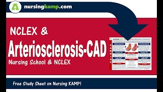 Nursing KAMP's Scribble Notes Cardiovascular Disease Arteriosclerosis CAD