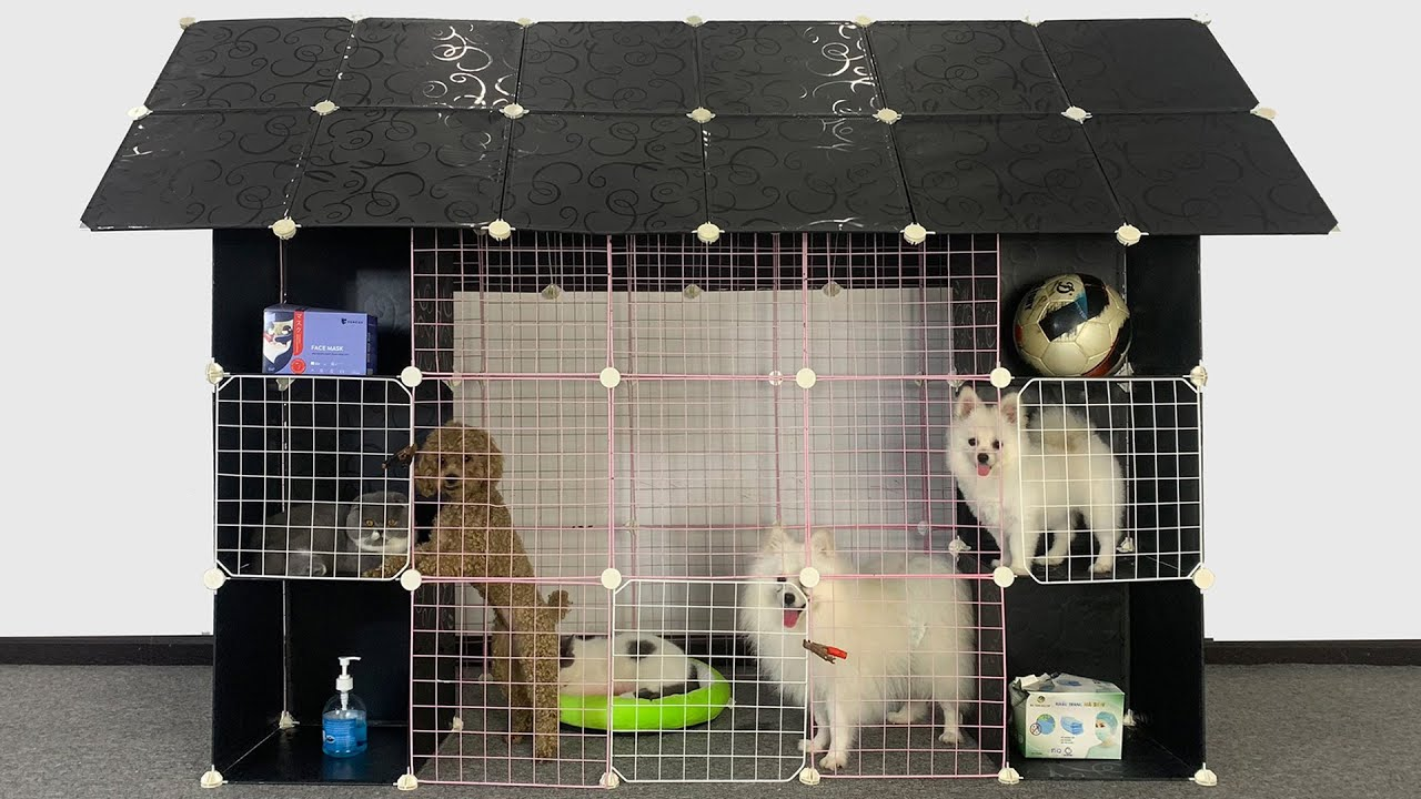 DIY Cute Pomeranian Dog House With Cube Grid Wire | Poodle Puppies & Kitten Cat | MR PET