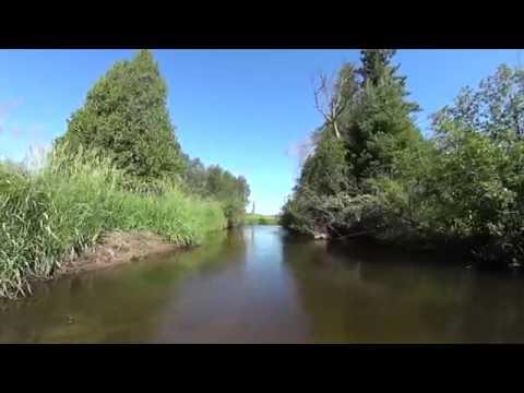 The Sturgeon River Cheboygan Country Michigan