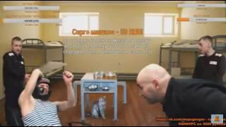 Кот воровской(вислоухий) Мопс отьехал, получил по голове!)