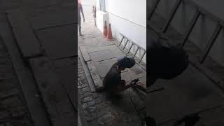 Funny welding person prank..