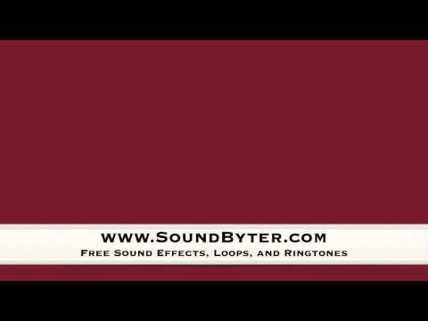 free-squeak-toy-sound-effect