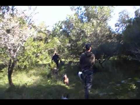 caza en uruguay, vareo por santa lucia chico