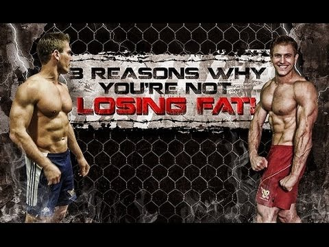 3-reasons-why-you're-not-losing-fat!
