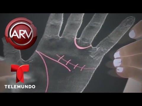 Expertos revelan cmo saber tu futuro con las manos | Al Rojo Vivo | Telemundo