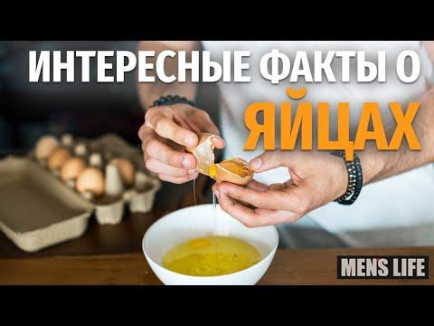 Интересные факты о ЯЙЦАХ. Куриные яйца - вред и польза