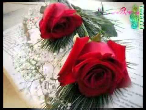 majid-al-muhandis---sabah-el-khayr