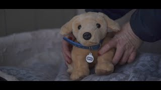 Rspca Release Tear Jerking Christmas Advert