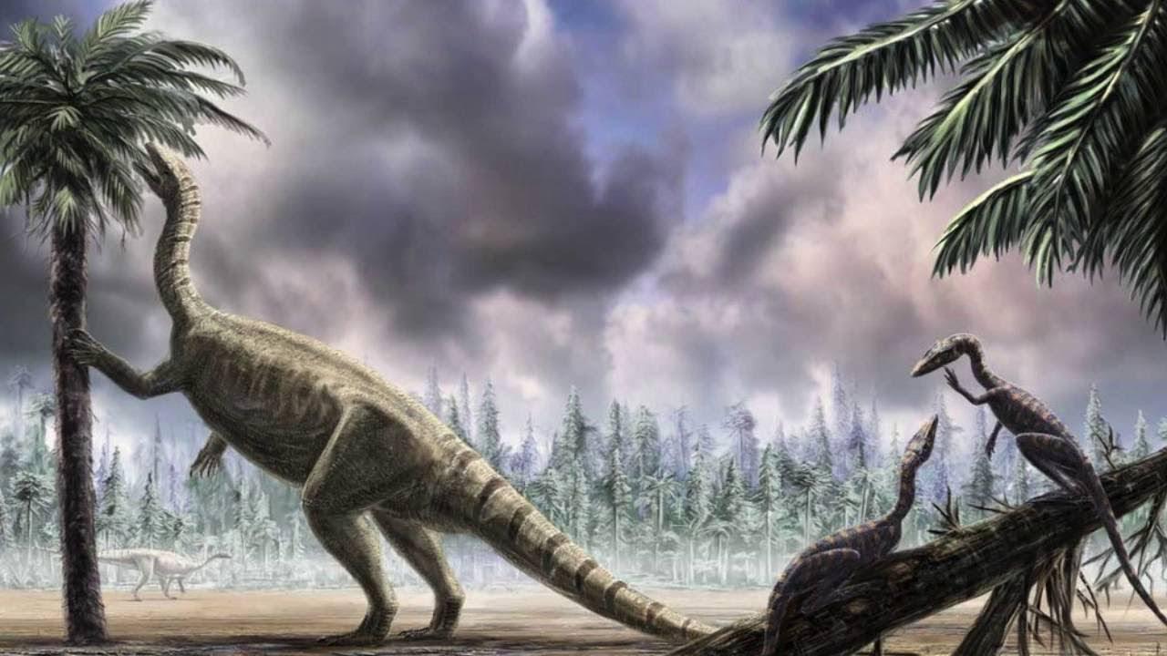 Что едят динозавры картинки