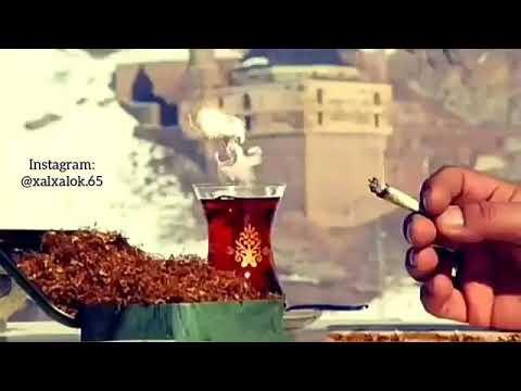 Damar Kürtçe şarkı WhatsApp durumu 🌹🌹