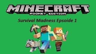 Minecraft Pocket Edition - Survival Madnesss