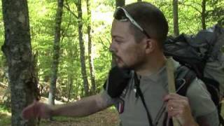Pyrénées: la difficile mission des