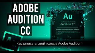 Как записать свой голос в Adobe Audition / 1440p