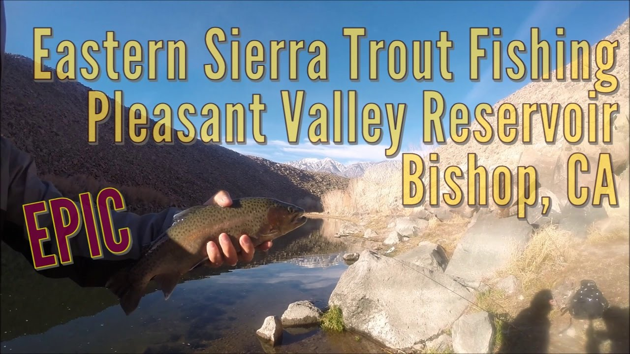 epic eastern sierra trout fishing at pleasant valley