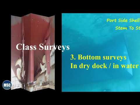 (03)..  Types of marine surveys