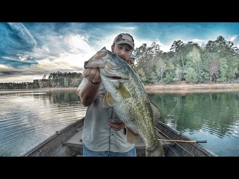 Fall Bass Fishing with Jerk Baits- Clarks Hill Lake 2016